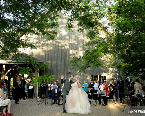 Bellamere Winery London Ontario Wedding Venue Orchard Best Wedding Venue London's Ideal Wedding Venue Romantic Newlyweds Love Rustic Wedding Venue Barn Wedding Venue Rustic Wedding Ceremony HRM Photography