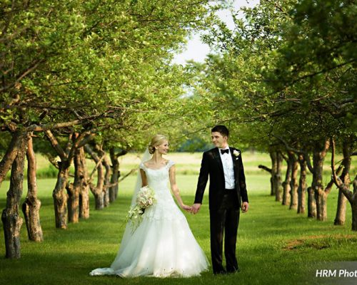 Bellamere Winery London Ontario Wedding Venue Orchard Best Wedding Venue London's Ideal Wedding Venue Romantic Newlyweds Love Rustic Wedding Venue Barn Wedding Venue Rustic Wedding Ceremony Orchard HRM Photography