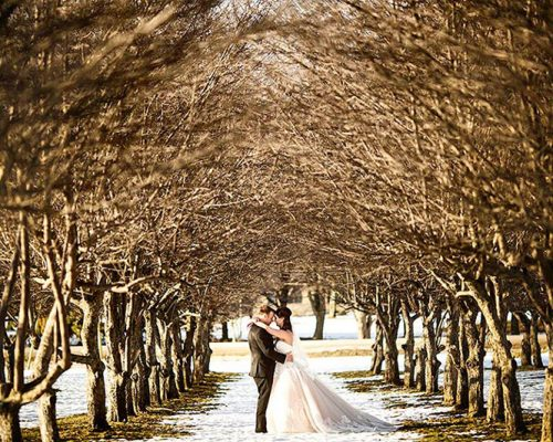 Bellamere Winery London Ontario Wedding Venue Orchard Best Wedding Venue London's Ideal Wedding Venue Romantic Newlyweds Love Rustic Wedding Venue Barn Wedding Venue Rustic Wedding Ceremony Winter Wedding Orchard
