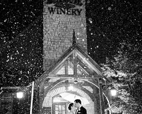 Bellamere Winery London Ontario Wedding Venue Winter Wedding HRM Photography Rustic Barn