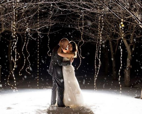 Bellamere Winery London Ontario Wedding Venue Winter Wedding One-12 Photography Orchard Snow Romantic Elegant