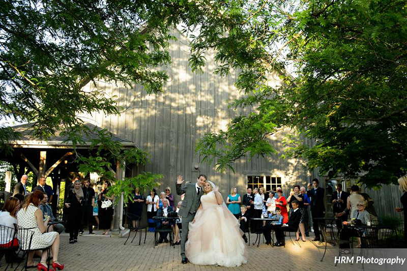 Bellamere Winery London Ontario Wedding Venue Orchard Best Wedding Venue London's Ideal Wedding Venue Romantic Newlyweds Love Rustic Wedding Venue Barn Wedding Venue Rustic Wedding Ceremony HRM Photography