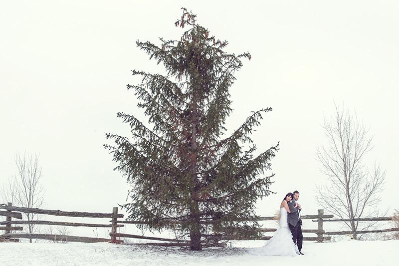 Bellamere Winery London Ontario Wedding Venue one-12 Photography Love Romantic Rustic Wedding Venue Barn Wedding