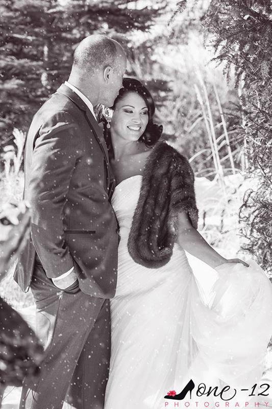 Bellamere Winery London Ontario Wedding Venue Winter Wedding Snow Romantic Rustic Wedding Venue Vintage Wedding Venue Barn Wedding Venue