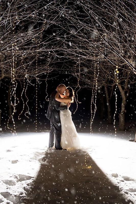 Bellamere Winery London Ontario Wedding Venue Winter Wedding One-12 Photography Orchard Snow Romantic Elegant